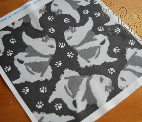 Trotting Keeshond and paw prints - black
