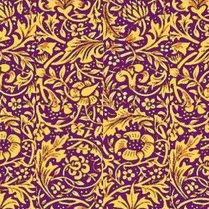 Nasturtium Royal