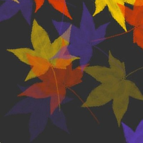fall; indigo, yellow, red