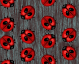 Rladybug_dots2_thumb