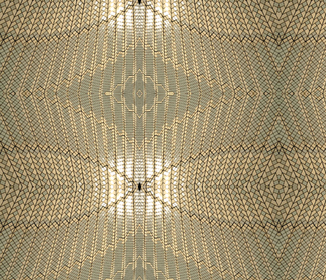 Opera  House ceiling inside
