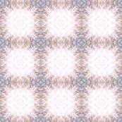 Snail_Shell_kaleidoscope