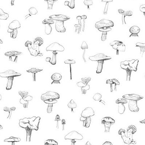 The Mushroom Gang - Open