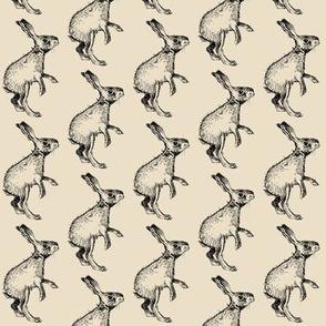 Bunny - Cream Background