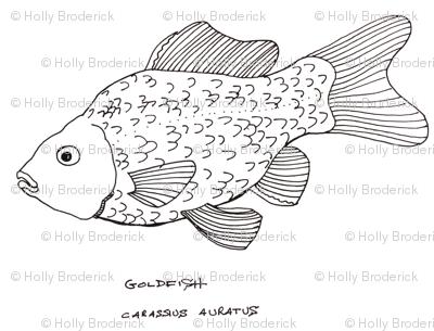 Rgoldfish_preview