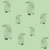 penguin pale green