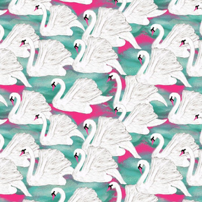 swans on pink
