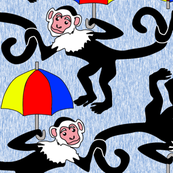 Monkeys in the Rain