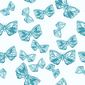 Moth in Teal
