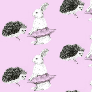 Rabbit and Hedgehog Ballet