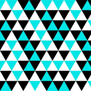 Triangles Turquoise Black White