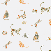 Flowery cats