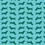 Aqua and Green Doxies