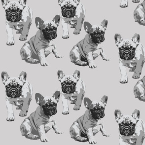 French Bulldog Kerstin BW small version