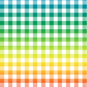 rainbow and white gingham