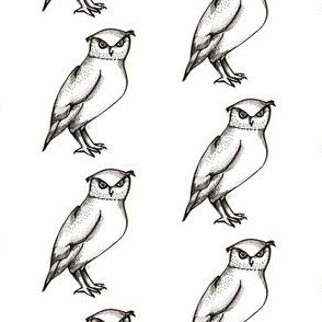 The Rest of the Owl