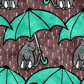Dry Cats 2