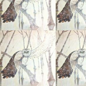 Owl paper