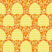 Citrus Rain Drops