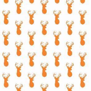 buck orange