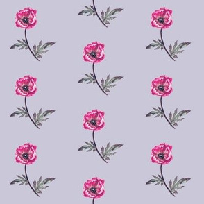 Poppy Magenta on Lavender Mist
