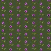Poppy Purple on Olive Green