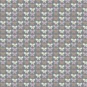 Grey-Butterflies