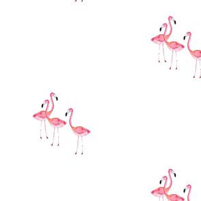 flamingoprint2