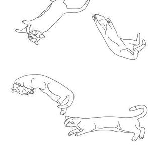 Cat Menagerie