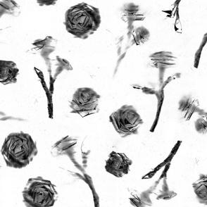Roses - 8
