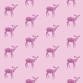Dear Deer...