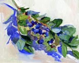 Rrblueberries_bright_sm_thumb
