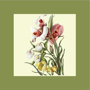Vintage Flower_Bouquets_Squares