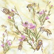 Clarkia and Honeybees on cream