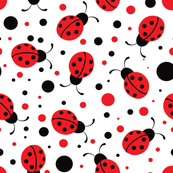 Ladybugs - White