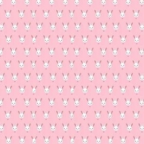 Pastel Pink Cute Bunny Rabbit