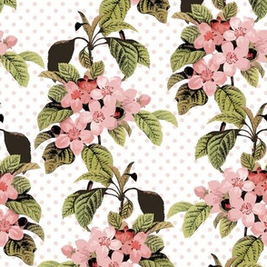 Large Apple Blossoms - Pink