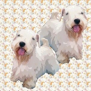 sealyham_terriers_and_paisley