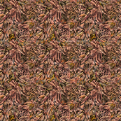 Abstract 420 Brown