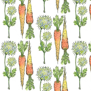 Botanical Carrot