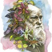 Charles Darwin II