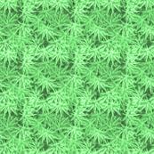 All Green Marijuana Leaves