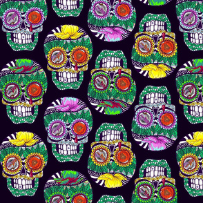 Calaveras_Lined_up_on_Deep_Purple_