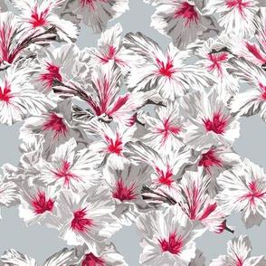 hibiskusblue