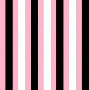 bw_stripe_pink