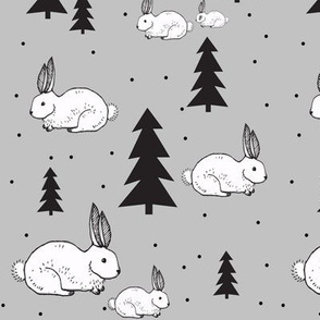 rabbit in snow - elvelyckan