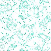 constellations // animals green bright stars constellation animals