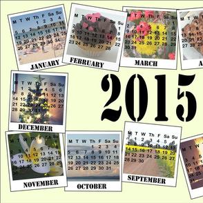 Southern Herimsphere Photo Calendar Teatowel