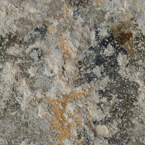 Solnhofen Limestone