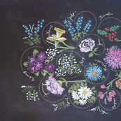Chalkboard Flowers of the Month